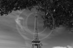 FranceFrance-2018DSC01344-1