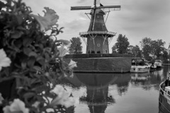 Holland-201800349-1
