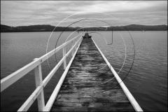 Tasmania-2011DSC_503211BW